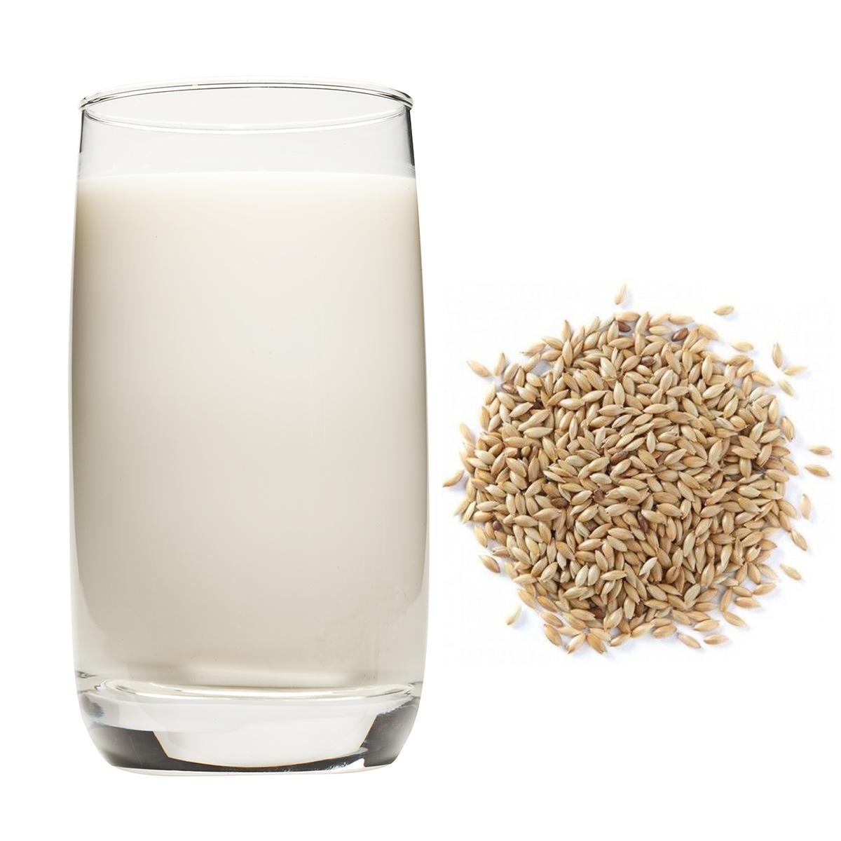 Bebida De Alpiste Bebida Vegetal De Grano Cereal O Pseudocereal Bebida Vegetal