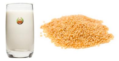 Bebida de amaranto - Bebida vegetal de semilla