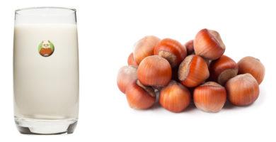 Bebida de avellana: bebida vegetal de frutos secos