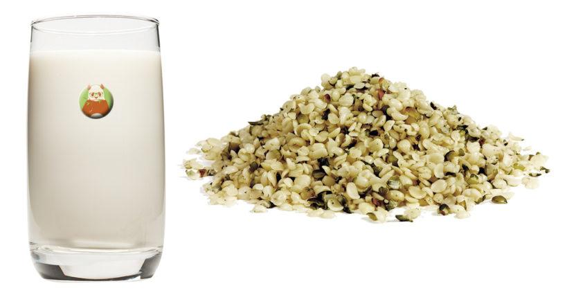 Bebida de cáñamo - Bebida vegetal de semilla