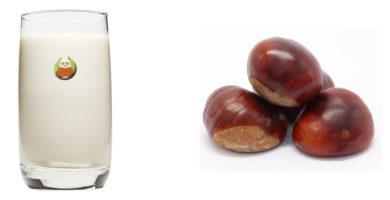 Bebida de castaña - Bebida vegetal de frutos secos