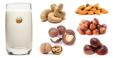 Bebidas vegetales de frutos secos