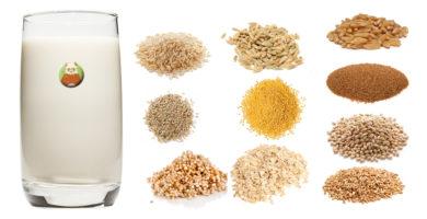 Bebidas vegetales de granos, cereales o pseudocereales