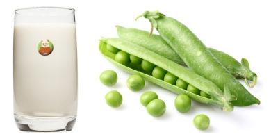 Bebida de guisante - Bebida vegetal a base de legumbre