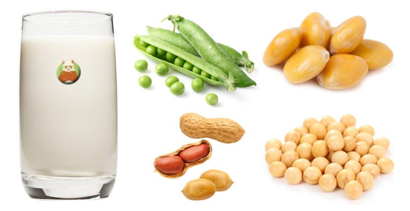 Bebidas vegetales a base de legumbres