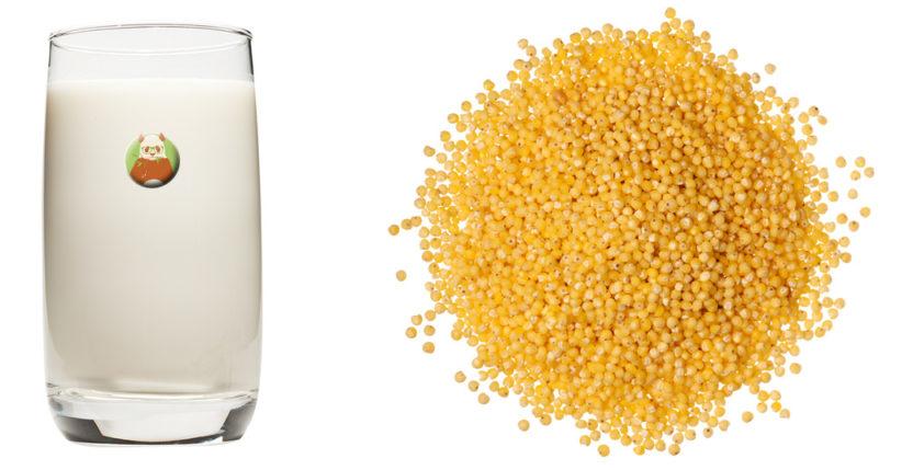 Bebida de mijo - Bebida vegetal de grano, cereal o pseudocereal