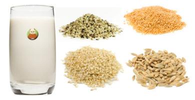 Bebidas vegetales de semillas