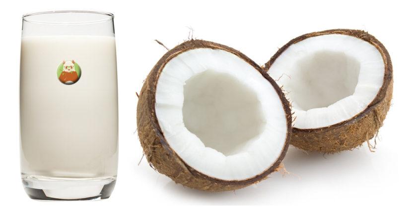 Leche de coco - Bebida vegetal de fruta